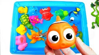 Learn Sea Animal Names and Zoo Animals Names Fun Education Toys For Kids