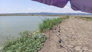Рыбалочка и шашлык. Отдых с тестем посреди недели 14.6.21