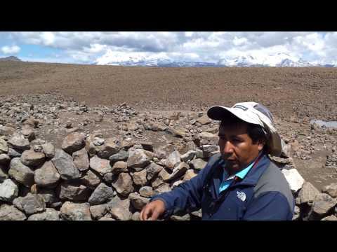 altiplano peru at 16,000 feet