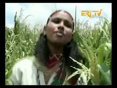 Eritrea Culture Folklor