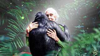 Jane Goodall Institute - Inaugural World Chimp Day - Daniel Mercer Art