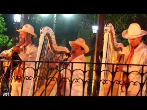 El Querreque Con Grupo Jarocho En Coyoacán, Ciudad De México