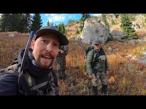 British Columbia Backcountry Elk 2020