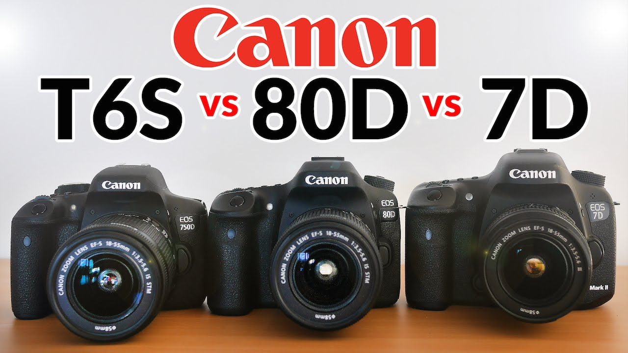 Canon 80D vs 7D Mark ii vs T6s/T6i - Which one should you buy?
