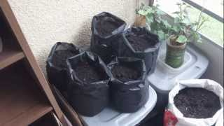 Balcony Vegetable Gardening With Grow Bags Made From Landscape Cloth And Glue Gun