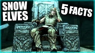 Skyrim - 5 Snow Elf Facts - Elder Scrolls Lore