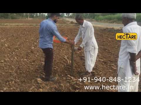 Hectare Transplanter