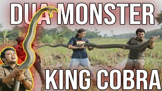 TWO KING COBRA MONSTER MAKES PANJI DESPERATE| ALPRIH IS DOWN