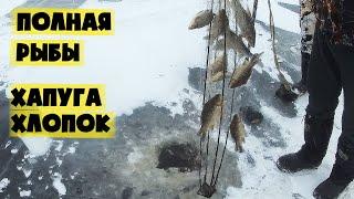 Рыбалка на Амуре в Глухозимье Лов Щуки Карася с Романом Fisherman DV 27 RUS