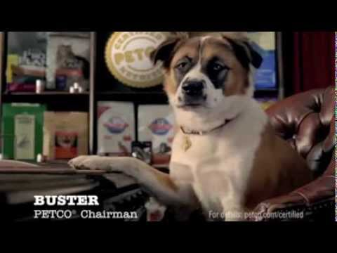 Buster Approved This Nutrition Commercial from Petco - YouTube