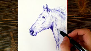 Drawing a horse with Ball point pen only!   Leontine van vliet