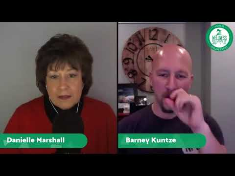 Live Call from Nov 12, 2017 with Nan Martin, Danielle Marshall & Lizzy Meyer