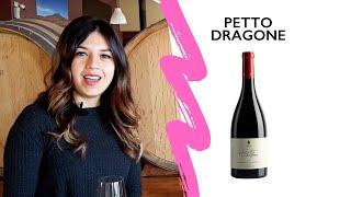 PETTO DRAGONE 2016 Video
