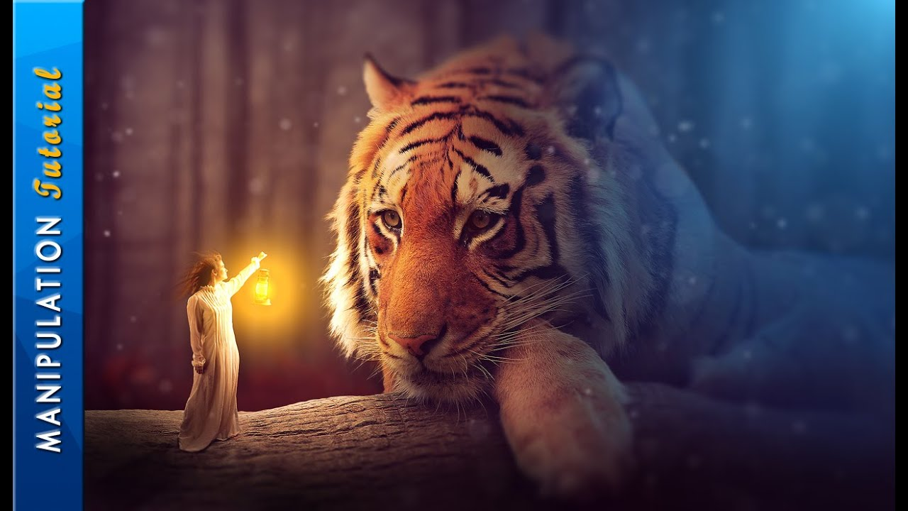 Bild Photoshop Photoshop Fantasy Photo Manipulation - Photoshop Cc