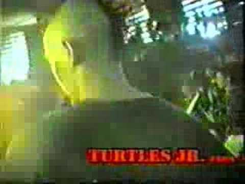 Turtles Jr - Indonesian Punk
