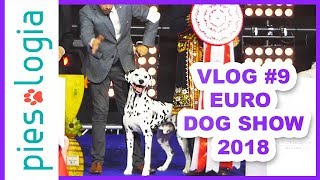 Vlog #9 Euro Dog Show 2018 🐩🥇🎉
