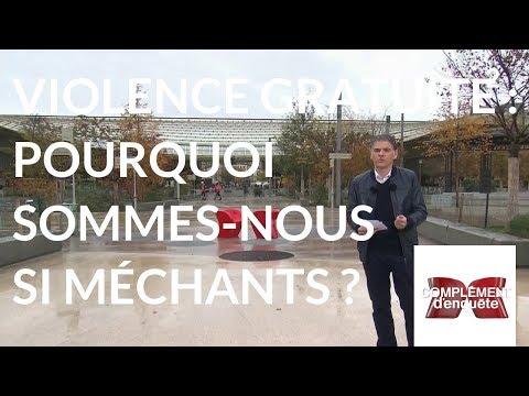 Complément d'enquête. Violence gratuite : pourquoi sommes-nous si méchants ? - 8 novembre 2018
