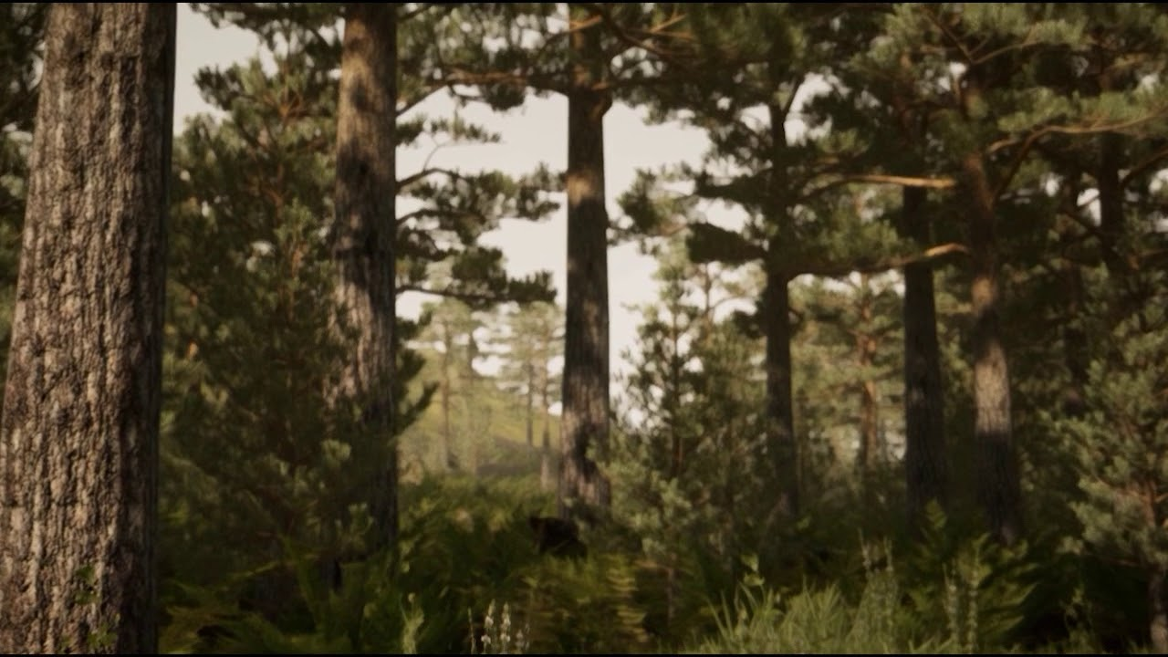 Unreal Engine Procedural Forest