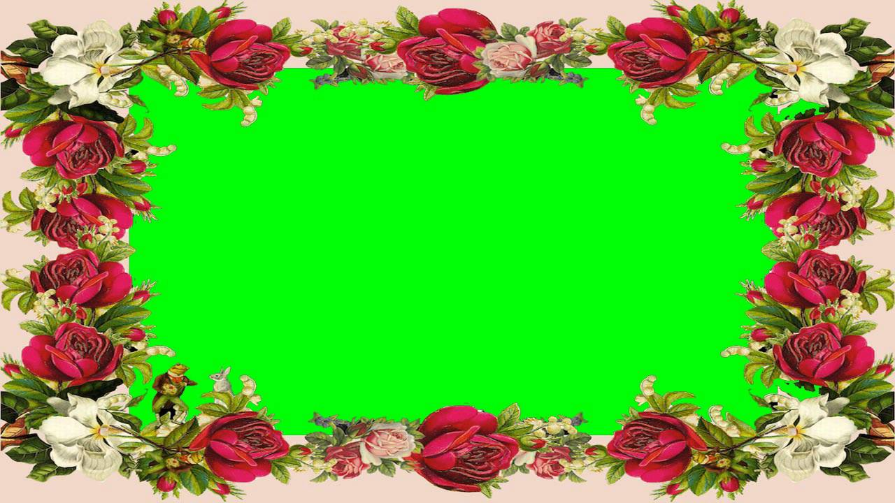nice photo frame green screen video free for editing 20