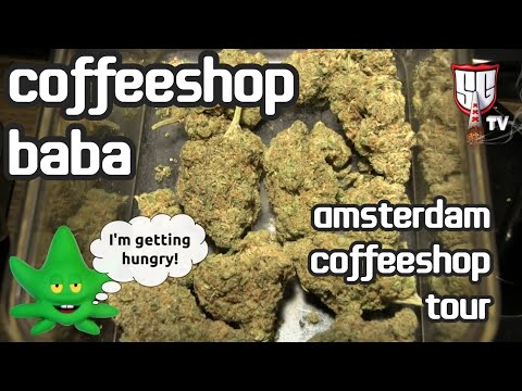 Baba Coffeeshop   Smokers Guide TV Amsterdam