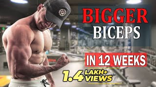Bicep Workout | 5 Scientific Techniques To Build Huge Biceps