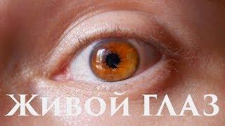 как сделать монтаж глаз в