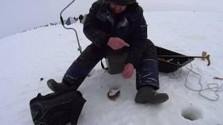 Зарисовки о рыбалке: Чермоз. Ловля Окуня на мормышку.
