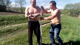 Рыбалка рыбцы