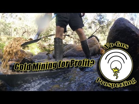 Gold Mining For Profit?