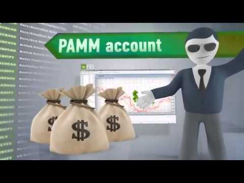 P a in forex trading meaning