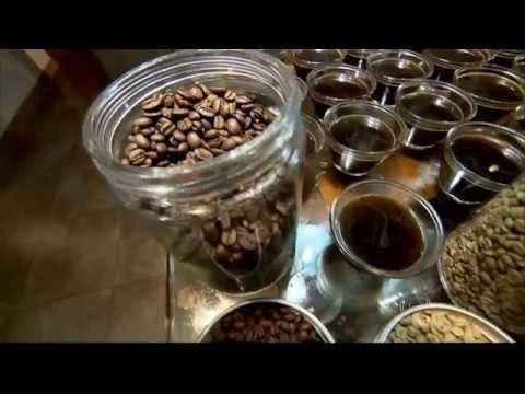 Globo Repórter fala sobre o café, a bebida mais amada do Brasil