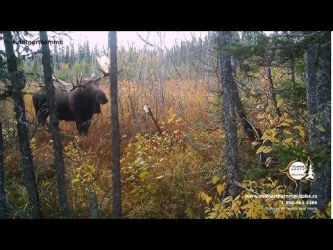 Tourism North slideshow 2015
