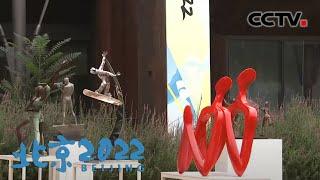 [北京2022]《飞翔的梦-情系冬奥》冬奥艺术系列展首展 | CCTV体育 - YouTube