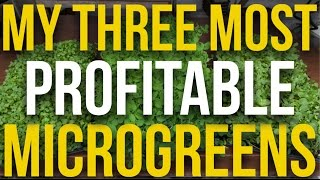 CROP FOCUS - My 3 Most Profitable Microgreens