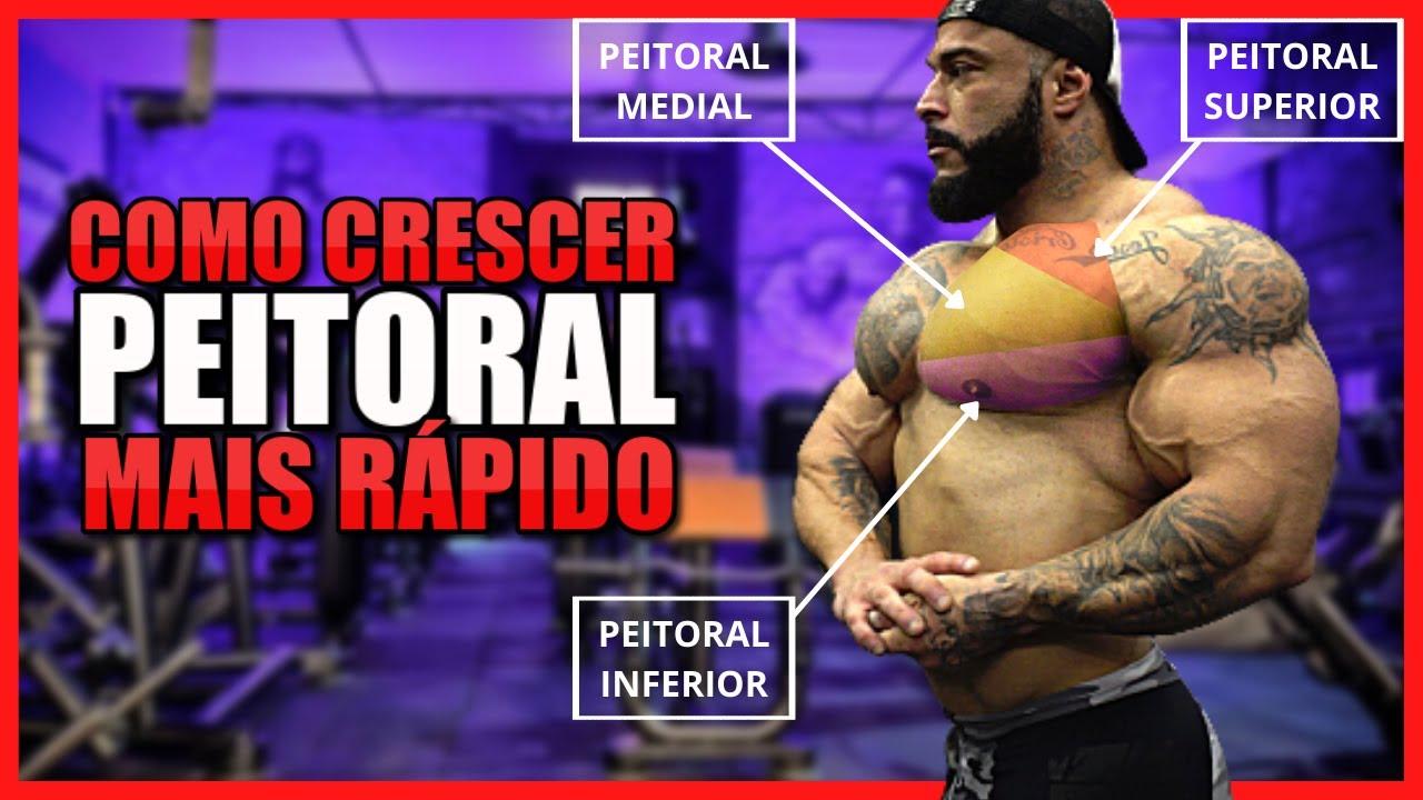 Download COMO CRESCER PEITORAL MAIS RÁPIDO [TREINO COMPLETO]