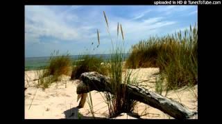 Już nie ma dzikich plaż - Marek Sośnicki