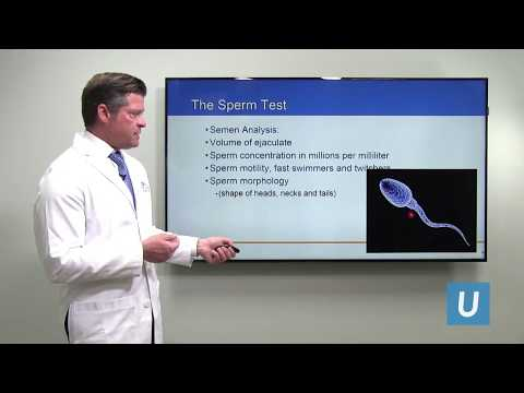 Improving Fertility in Men with Poor Sperm Count | UCLA Urology