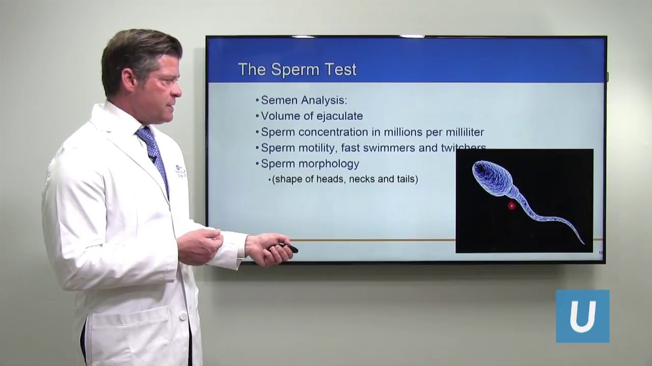 Improving Fertility in Men with Poor Sperm Count | UCLA Urology -  #UCLAMDChat Webinar