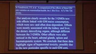Conflicting Science on the Safety of Genetically Modified Food
