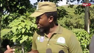 """""""Nimevaa kikamanda, hapa tutakuwa wakali zaidi"""" –Waziri Kigwangalla"""