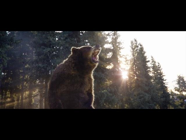 Call of the Wild - Når villdyret våkner | På kino 21. februar
