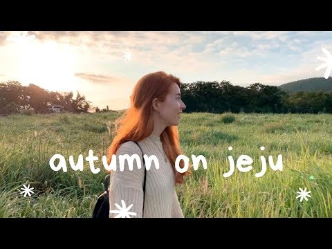 One Day on Jeju Island in Autumn (Using The Bus!) | Korea VLOG