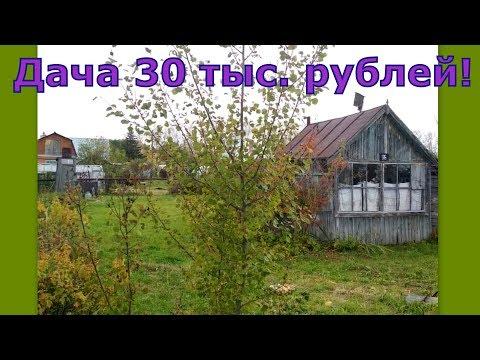 Купили заброшенную дачу за 30 тысяч рублей