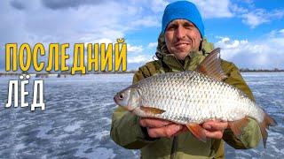 ПОСЛЕДНИЙ ЛЕД Ловля белой рыбы на мормышку на большой глубине 7 ВИДОВ РЫБ на закрытие сезона