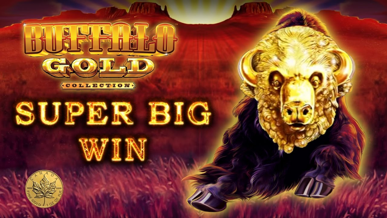 online live casino wonky