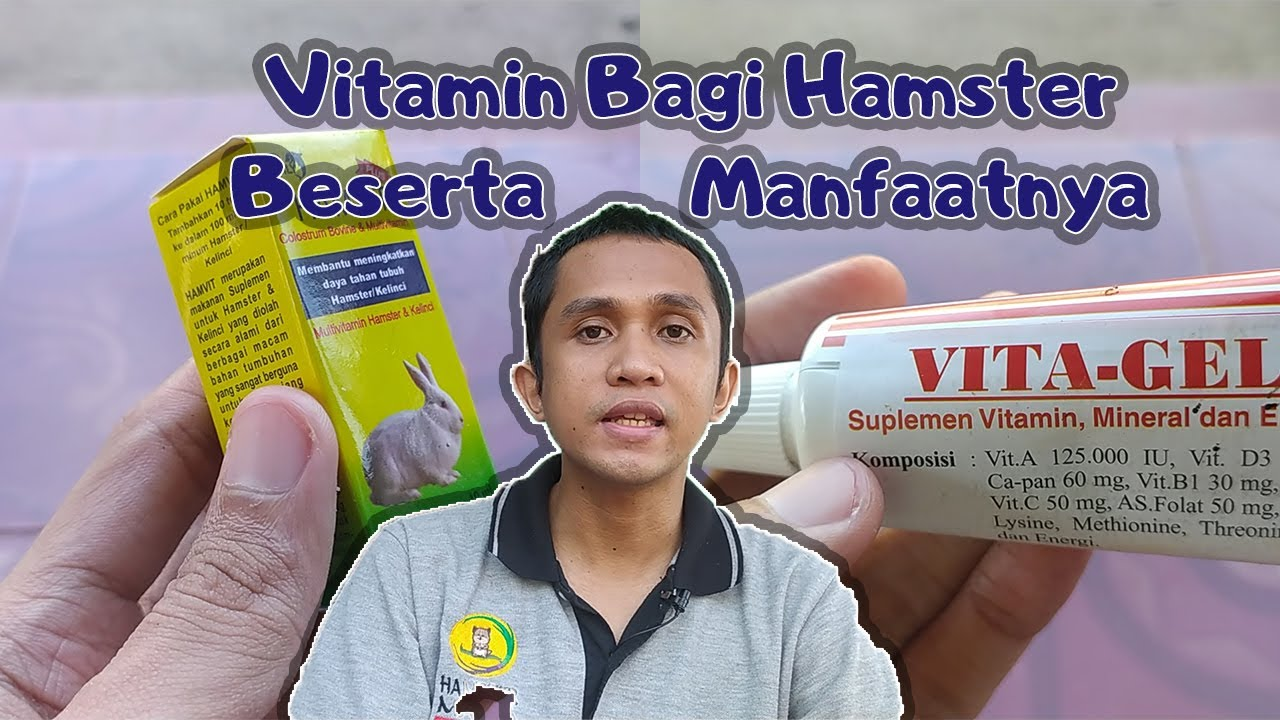 Berbagai Jenis Vitamin Yang Cocok Untuk Hamster + Manfaat