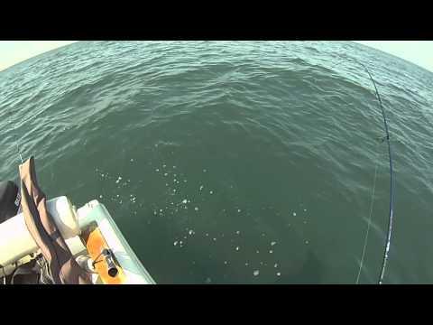 Offshore Light Game
