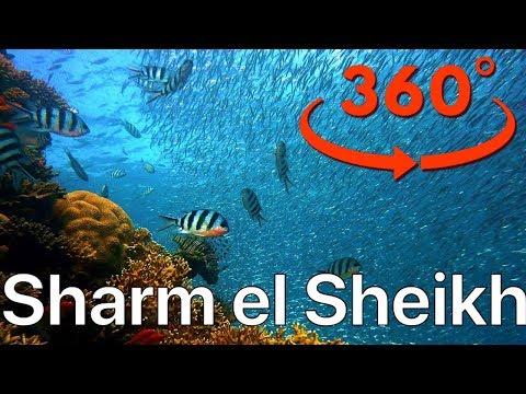 VR Video 360° ШАРМ ЭЛЬ ШЕЙХ ПОД ВОДОЙ! Подводный мир Красного моря! Лодка Батискаф ЕГИПЕТ 2109