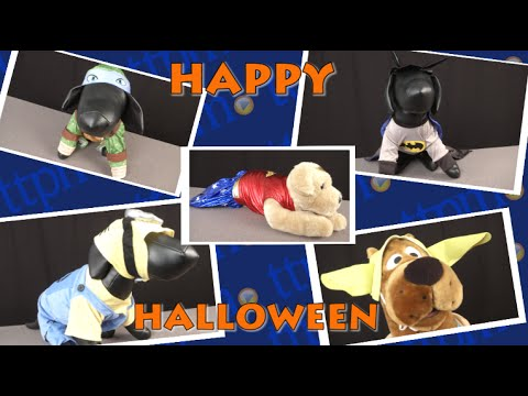 Dog Halloween Costumes from Rubies