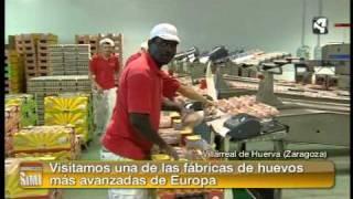 Gambar cover Los huevos de Villarreal de Huerva. Sin Ir Más Lejos